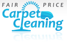 Carpet Cleaning in New York, New Jersey & Connecticut